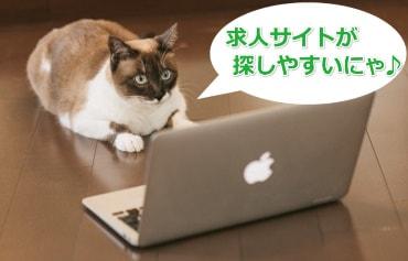 パソコンでアルバイト情報を探す猫